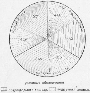 Распределение тягового усилия в процентном отношении по парам и между подседельной и подручной лошадьми в артиллерийской запряжке