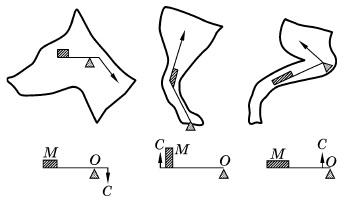 Основные типы рычагов опорно-двигательного аппарата животных