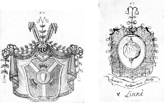 Ф.1 - герб Линнея; Ф.2 - проект герба, предложенный Линнеем, по собственноручному рисунку